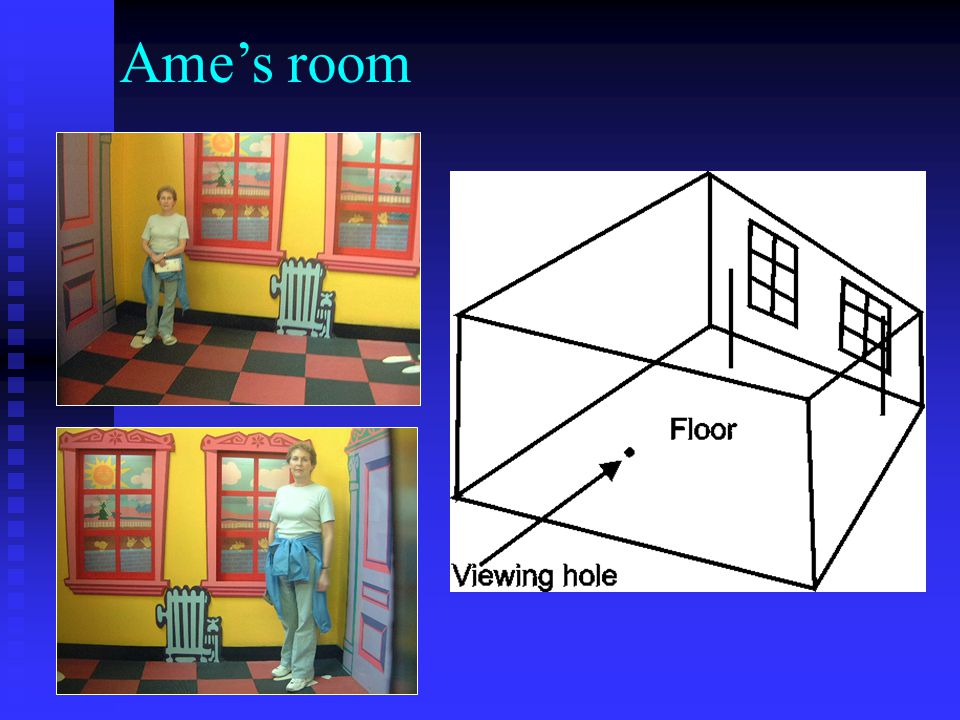 Ame's room