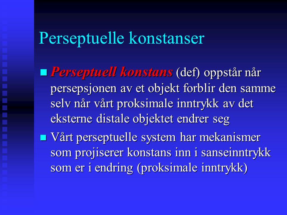 Perseptuelle konstanser