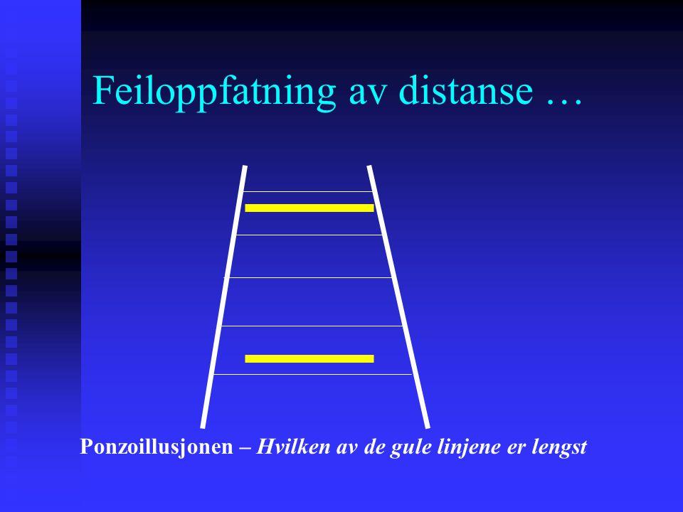 Feiloppfatning av distanse …