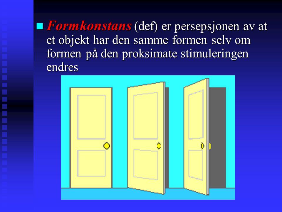 Formkonstans (def) er persepsjonen av at et objekt har den samme formen selv om formen på den proksimate stimuleringen endres