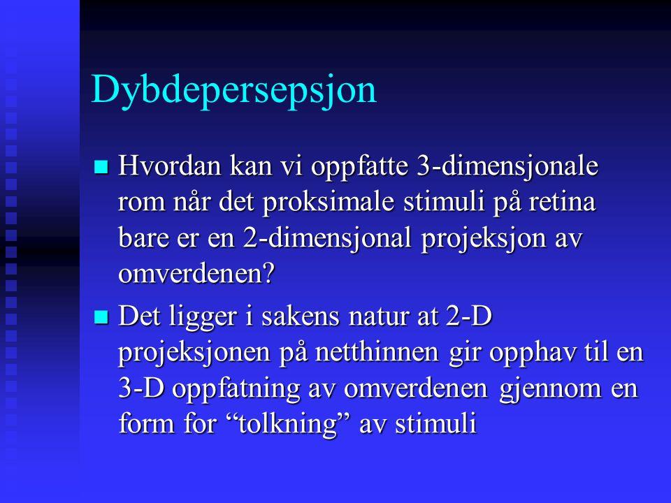 Dybdepersepsjon Hvordan kan vi oppfatte 3-dimensjonale rom når det proksimale stimuli på retina bare er en 2-dimensjonal projeksjon av omverdenen