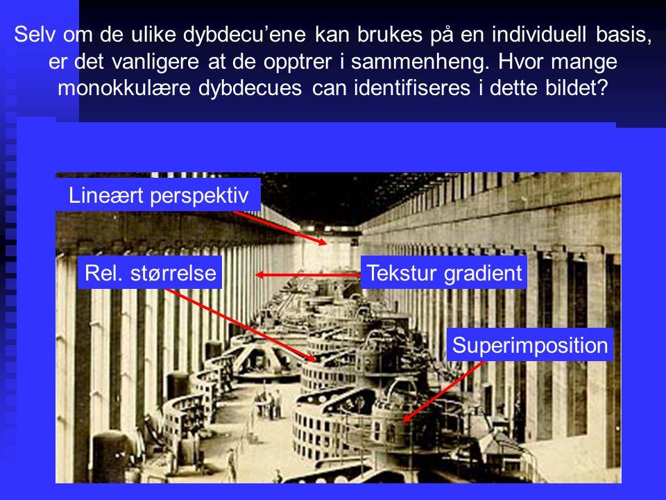 Selv om de ulike dybdecu'ene kan brukes på en individuell basis, er det vanligere at de opptrer i sammenheng. Hvor mange monokkulære dybdecues can identifiseres i dette bildet