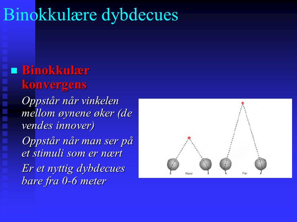Binokkulære dybdecues