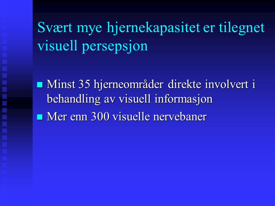 Svært mye hjernekapasitet er tilegnet visuell persepsjon