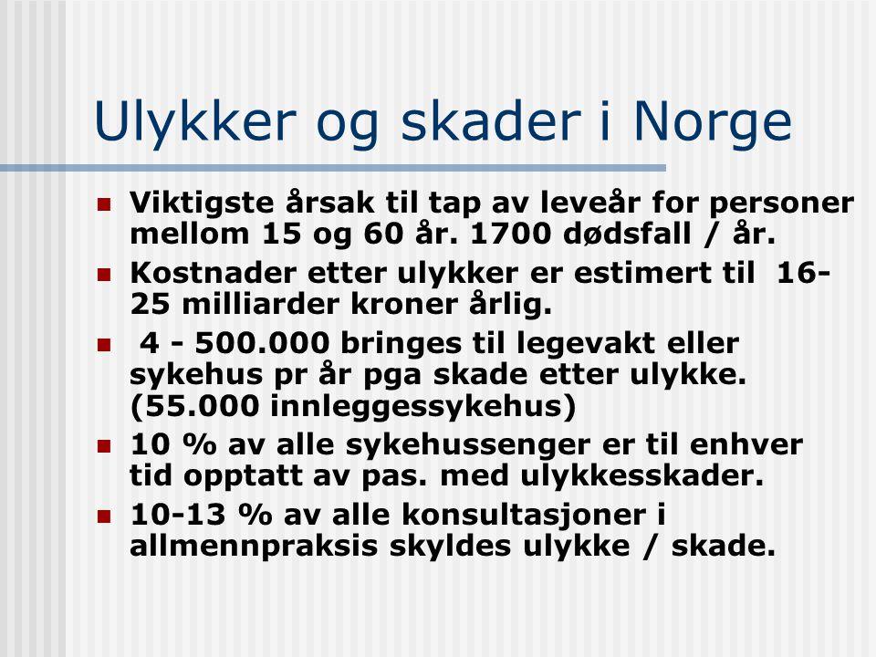 Ulykker og skader i Norge