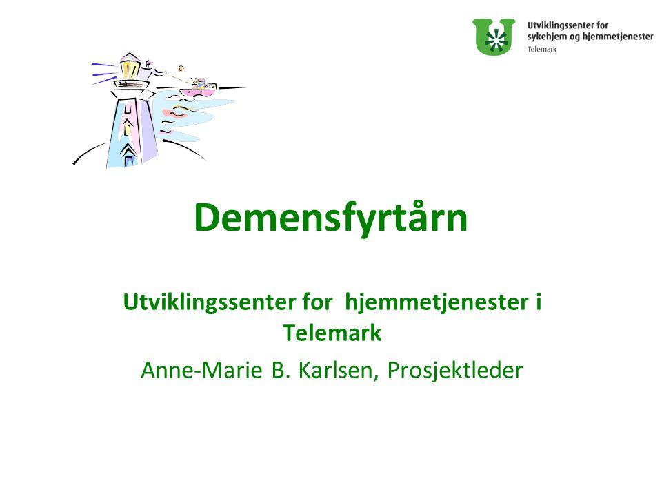 Utviklingssenter for hjemmetjenester i Telemark
