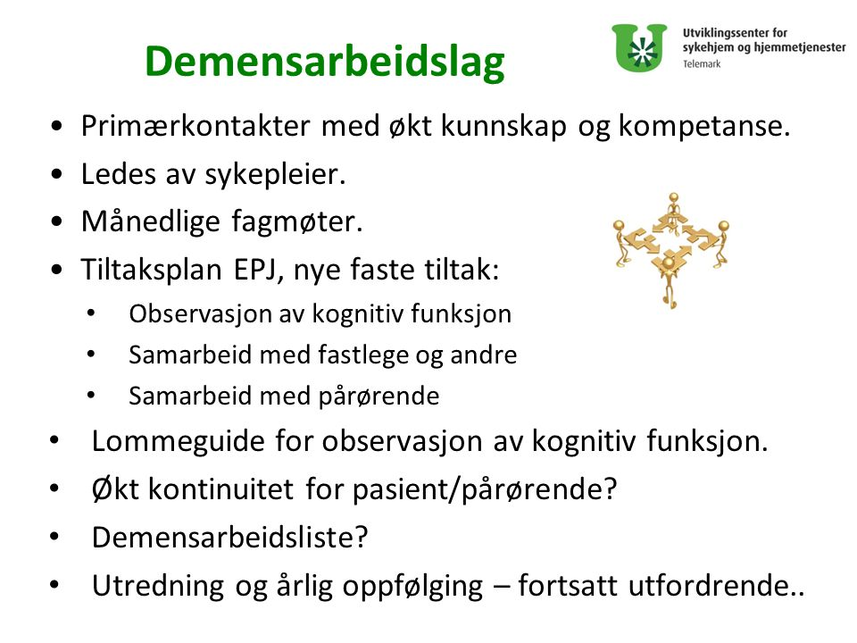 Demensarbeidslag Primærkontakter med økt kunnskap og kompetanse.