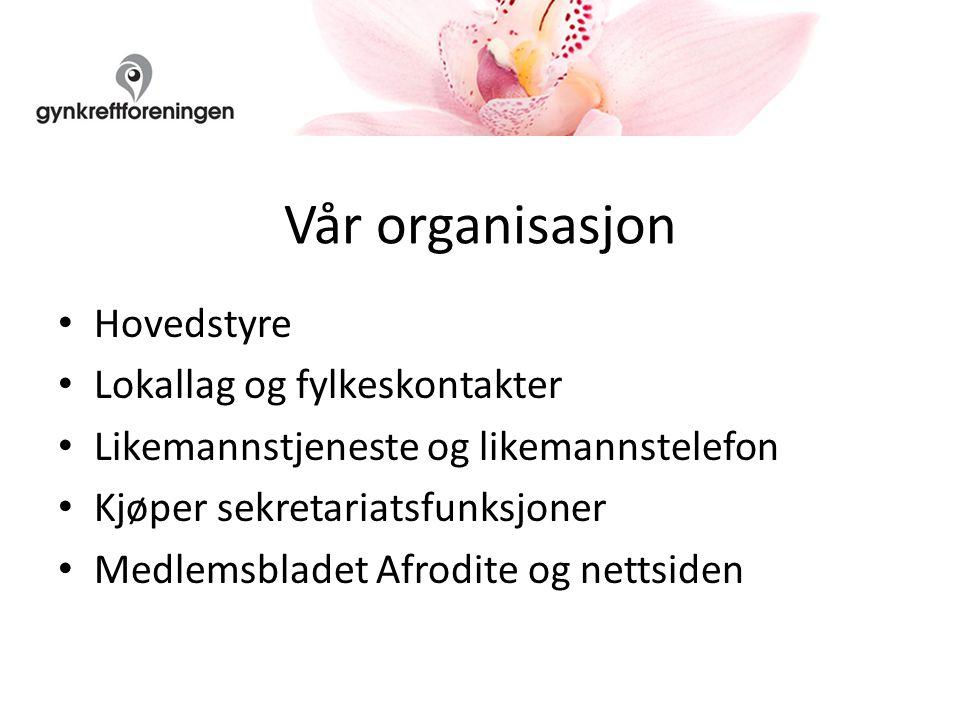 Vår organisasjon Hovedstyre Lokallag og fylkeskontakter