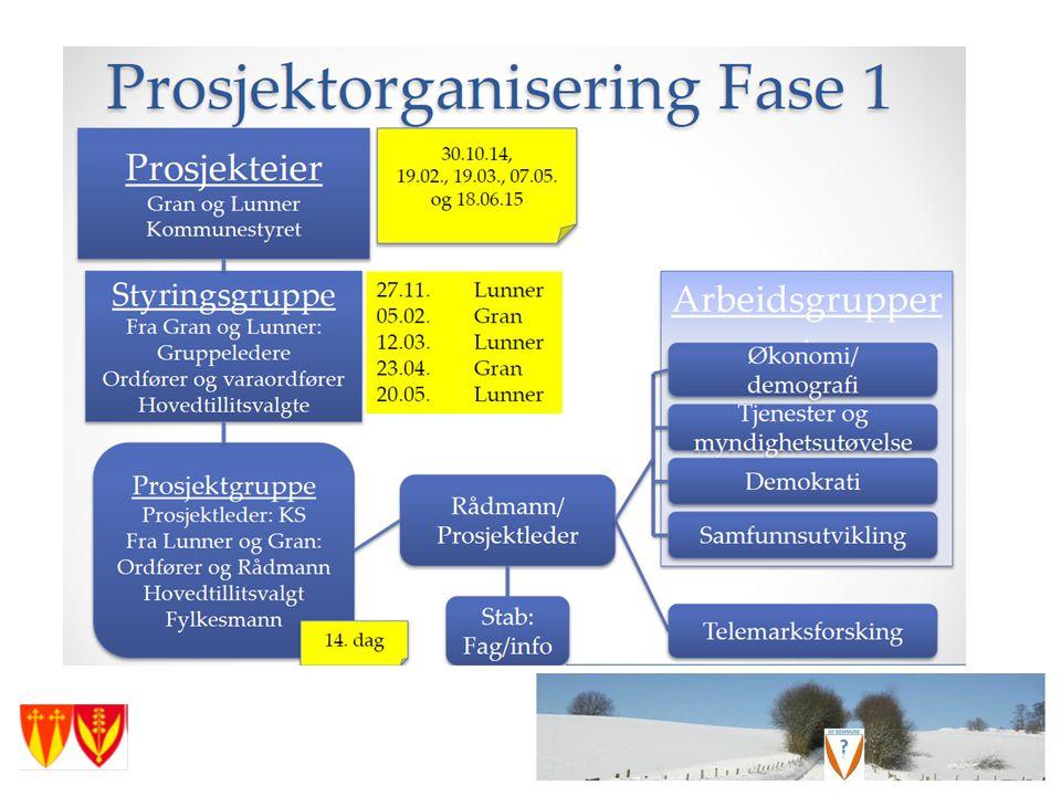 Fase 1 er perioden frem til beslutningspunktet hvor en sier ja eller nei til å bygge ny kommune på Hadeland - juni 2015.