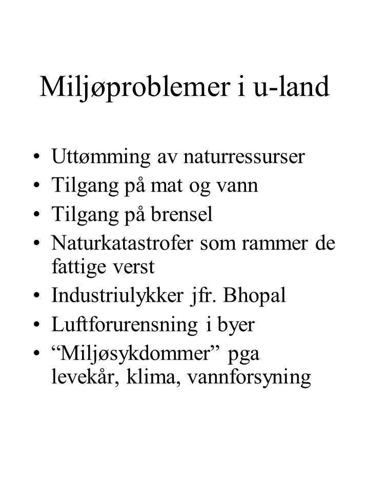 Miljøproblemer i u-land