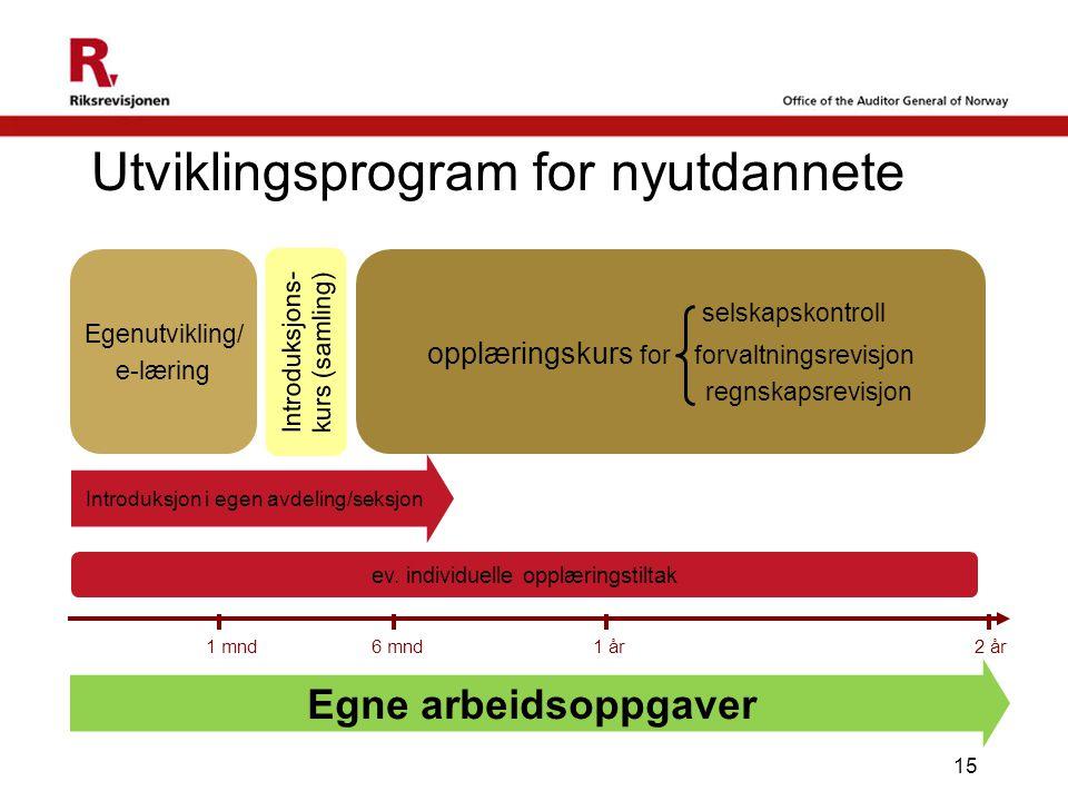 Utviklingsprogram for nyutdannete