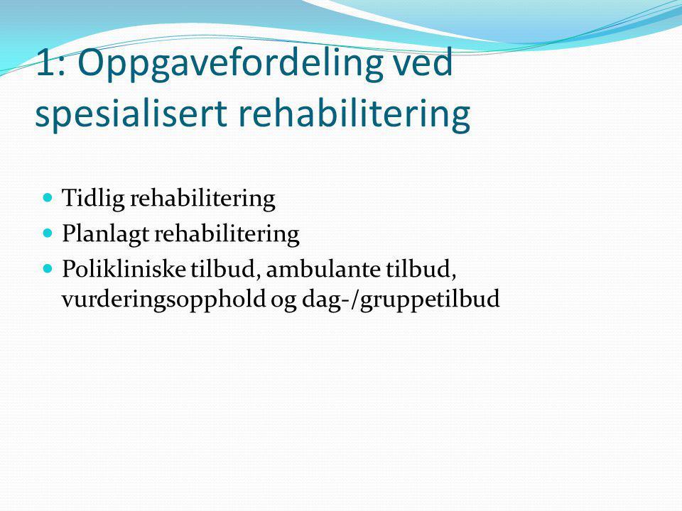 1: Oppgavefordeling ved spesialisert rehabilitering