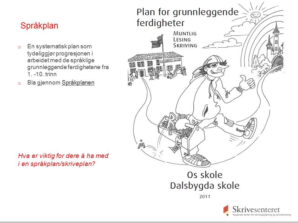 Språkplan Hva er viktig for dere å ha med i en språkplan/skriveplan