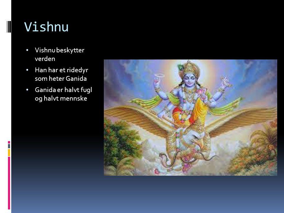 Vishnu Vishnu beskytter verden Han har et ridedyr som heter Ganida