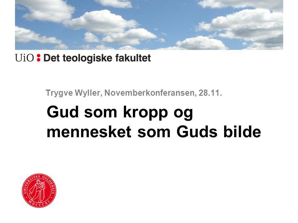 Trygve Wyller, Novemberkonferansen, 28.11.