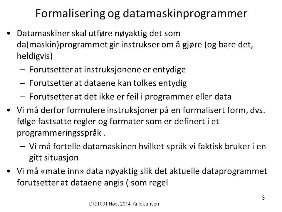 Formalisering og datamaskinprogrammer