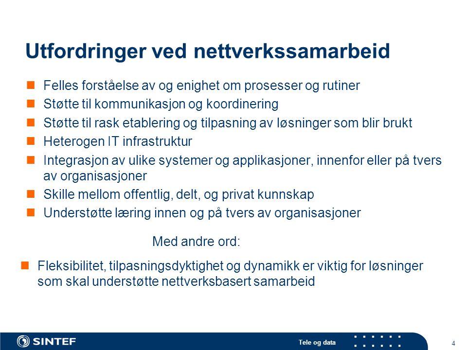 Utfordringer ved nettverkssamarbeid