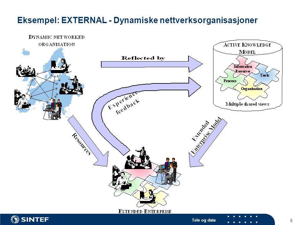 Eksempel: EXTERNAL - Dynamiske nettverksorganisasjoner