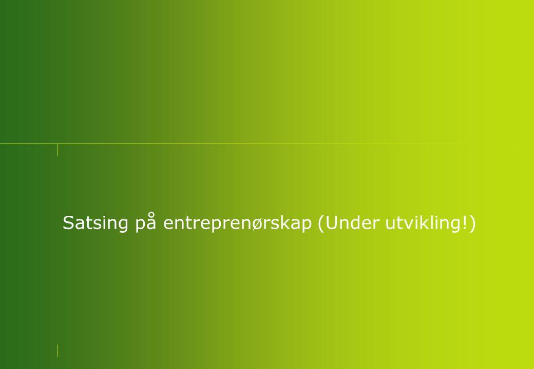 Satsing på entreprenørskap (Under utvikling!)