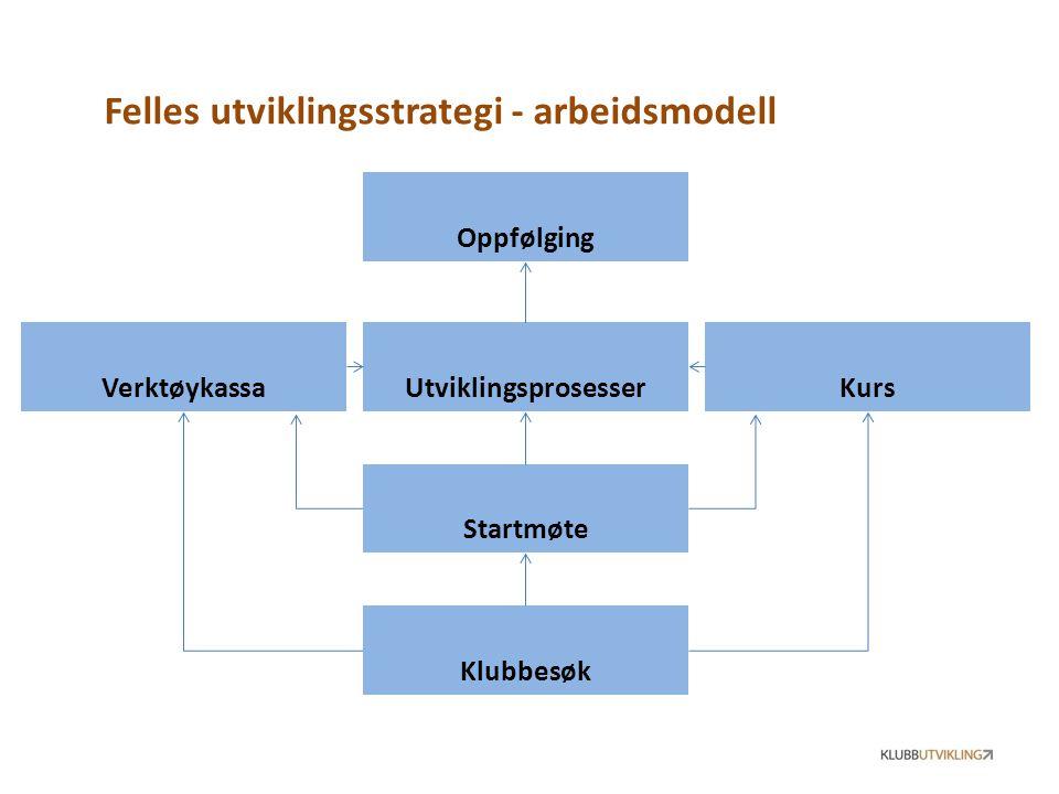 Felles utviklingsstrategi - arbeidsmodell