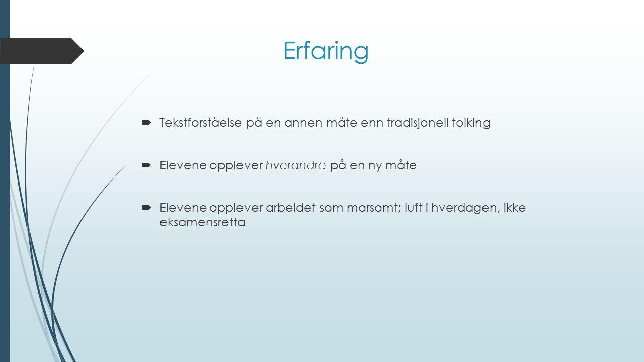 Erfaring Tekstforståelse på en annen måte enn tradisjonell tolking