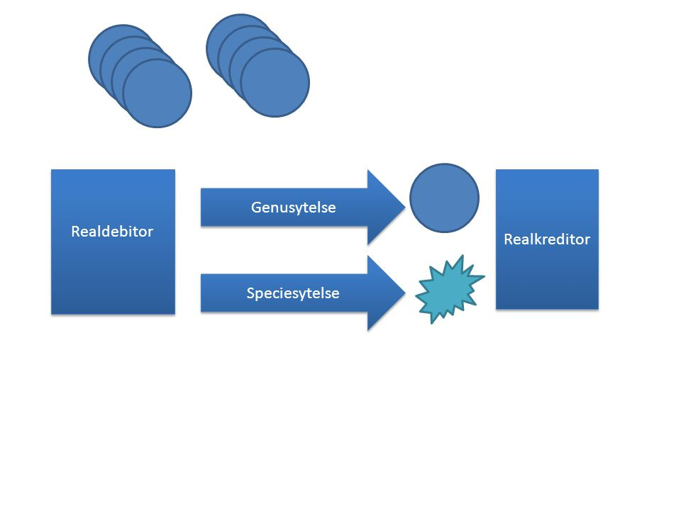 Realdebitor Genusytelse Realkreditor Speciesytelse