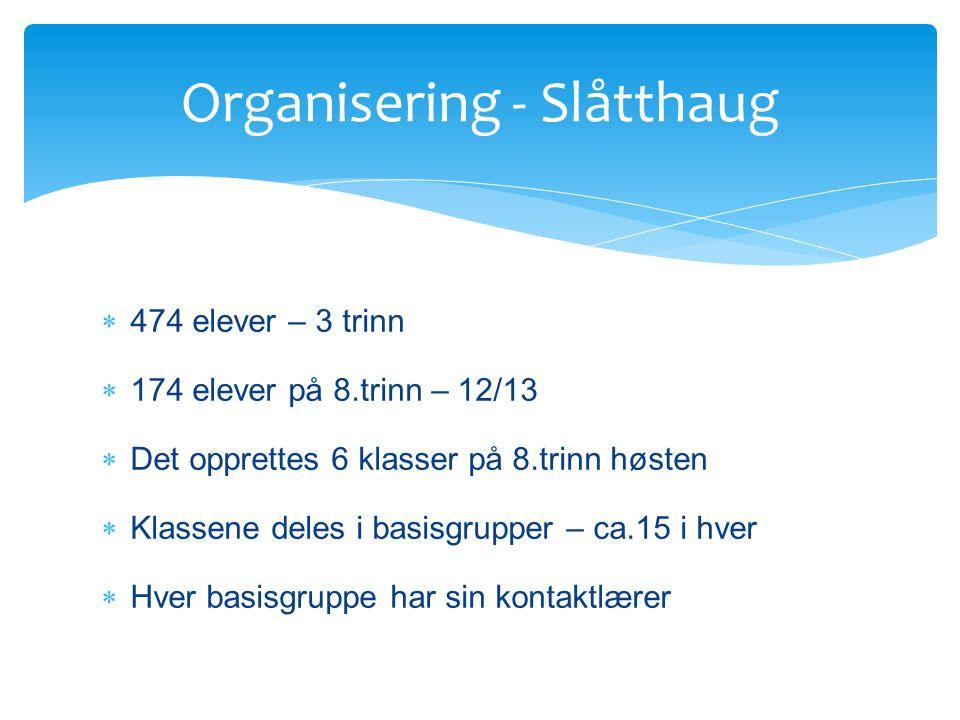 Organisering - Slåtthaug