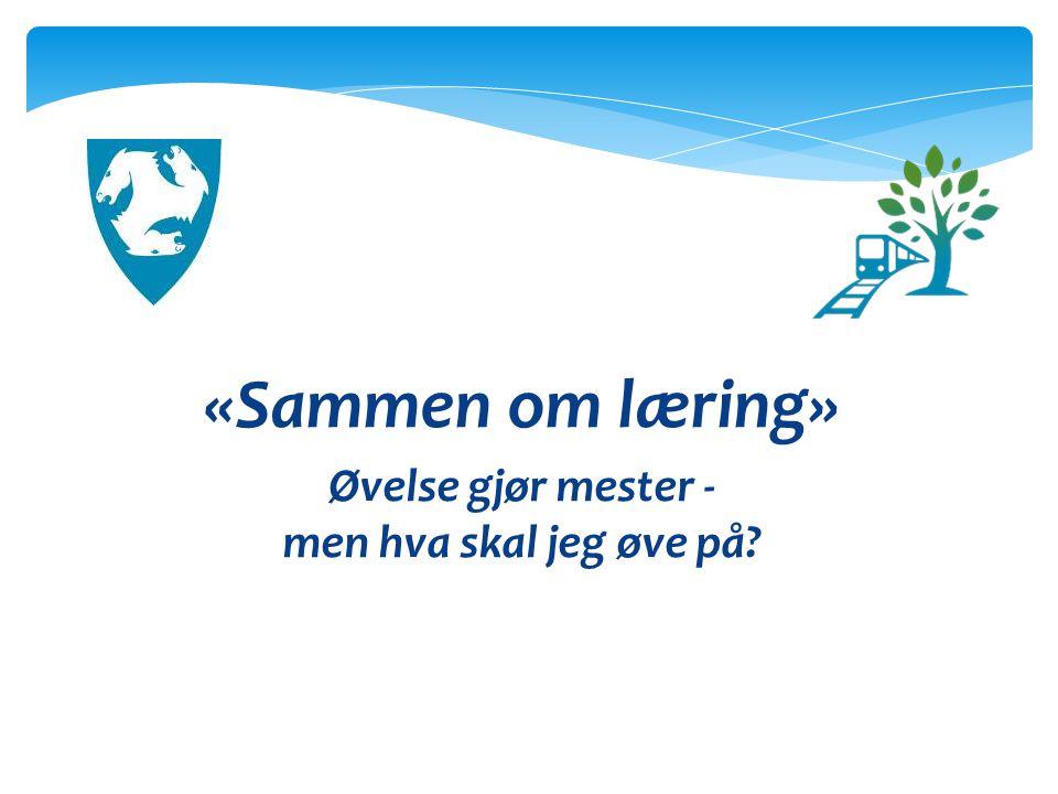 «Sammen om læring» - Finstad skoles visjon