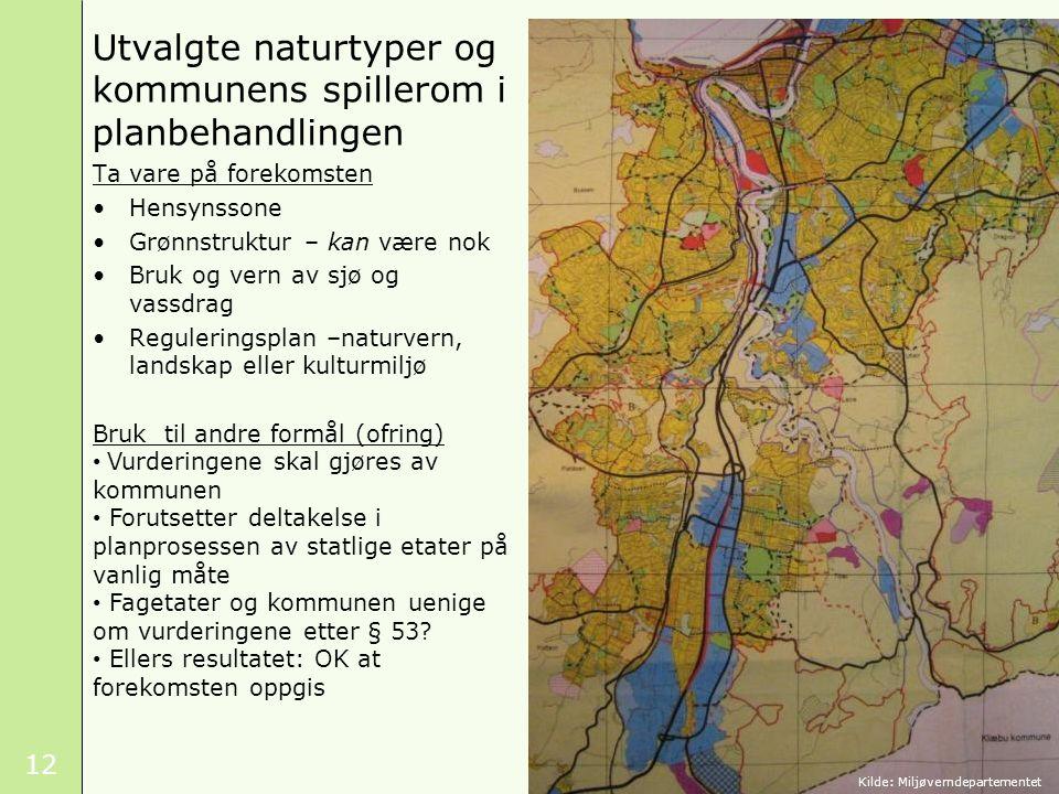 Utvalgte naturtyper og kommunens spillerom i planbehandlingen