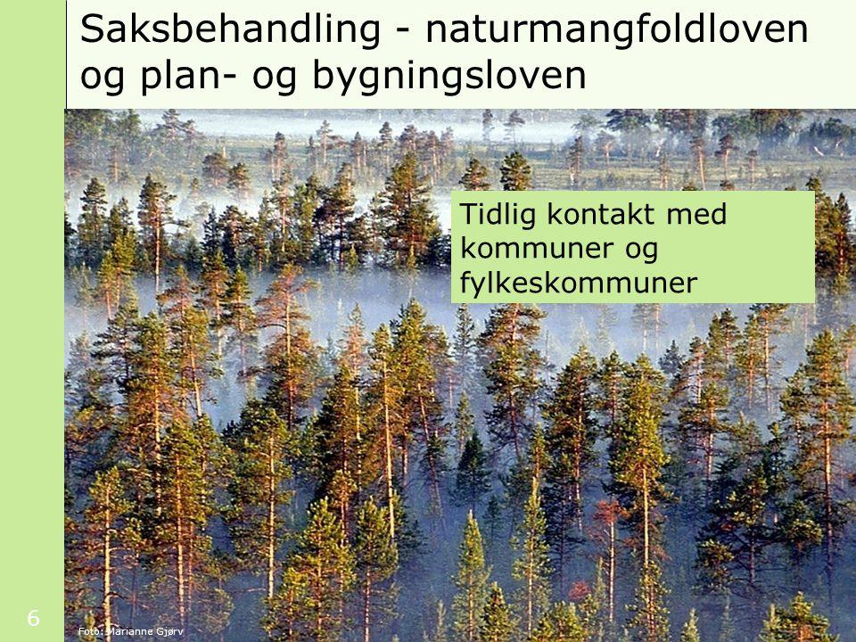 Saksbehandling - naturmangfoldloven og plan- og bygningsloven