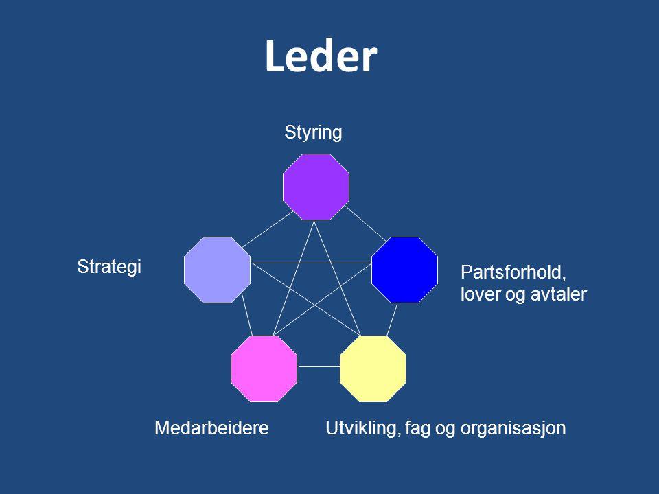 Leder Styring Strategi Partsforhold, lover og avtaler Medarbeidere