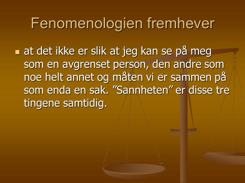 Fenomenologien fremhever
