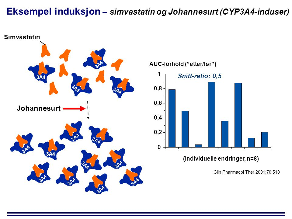 Eksempel induksjon – simvastatin og Johannesurt (CYP3A4-induser)