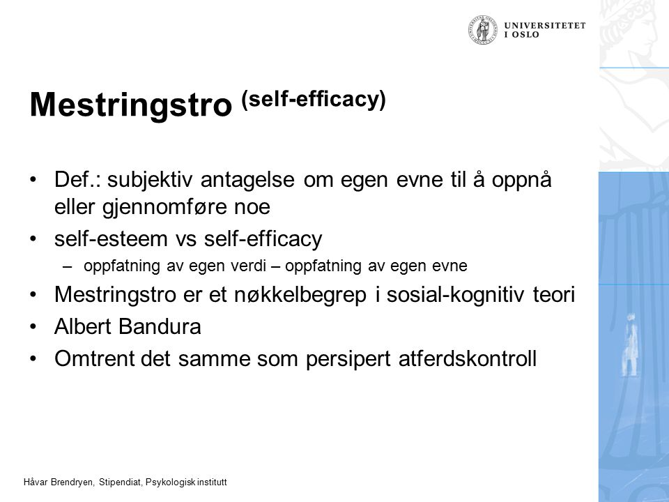 Mestringstro (self-efficacy)