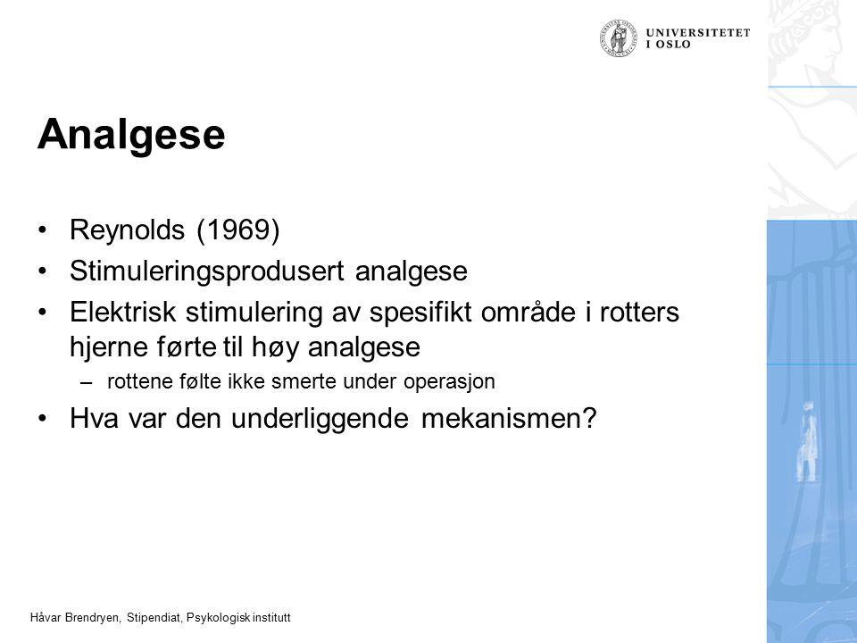Analgese Reynolds (1969) Stimuleringsprodusert analgese