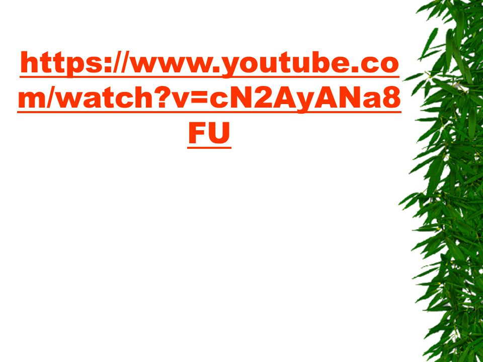 https://www.youtube.com/watch v=cN2AyANa8FU