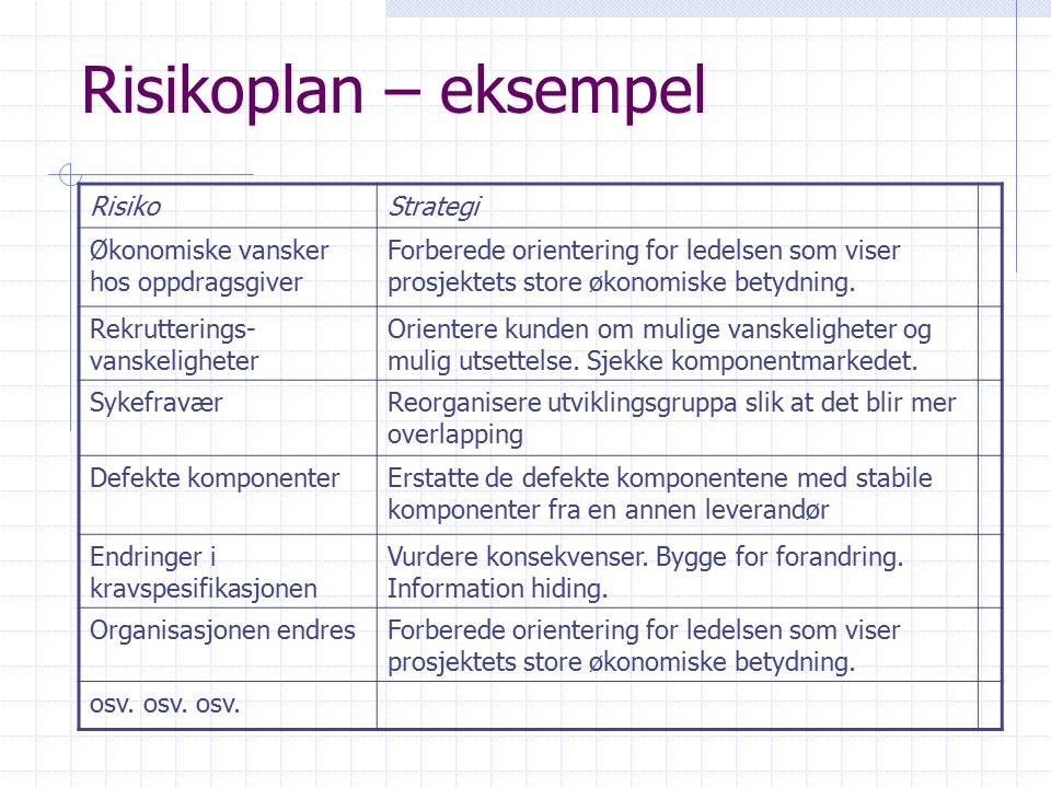 Risikoplan – eksempel Risiko Strategi