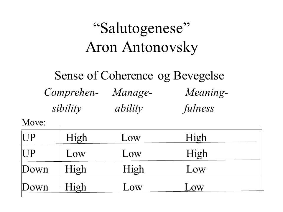 Salutogenese Aron Antonovsky