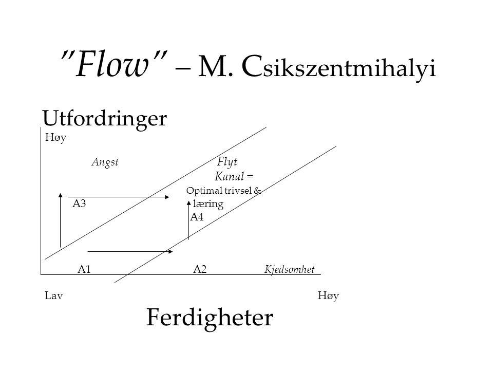 Flow – M. Csikszentmihalyi