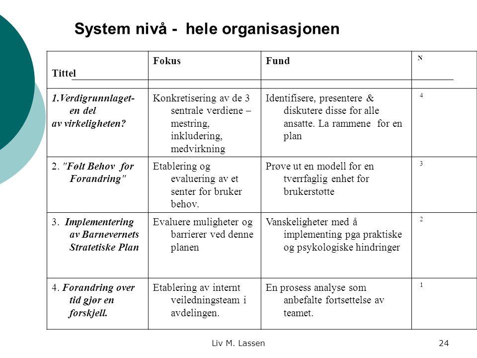 System nivå - hele organisasjonen