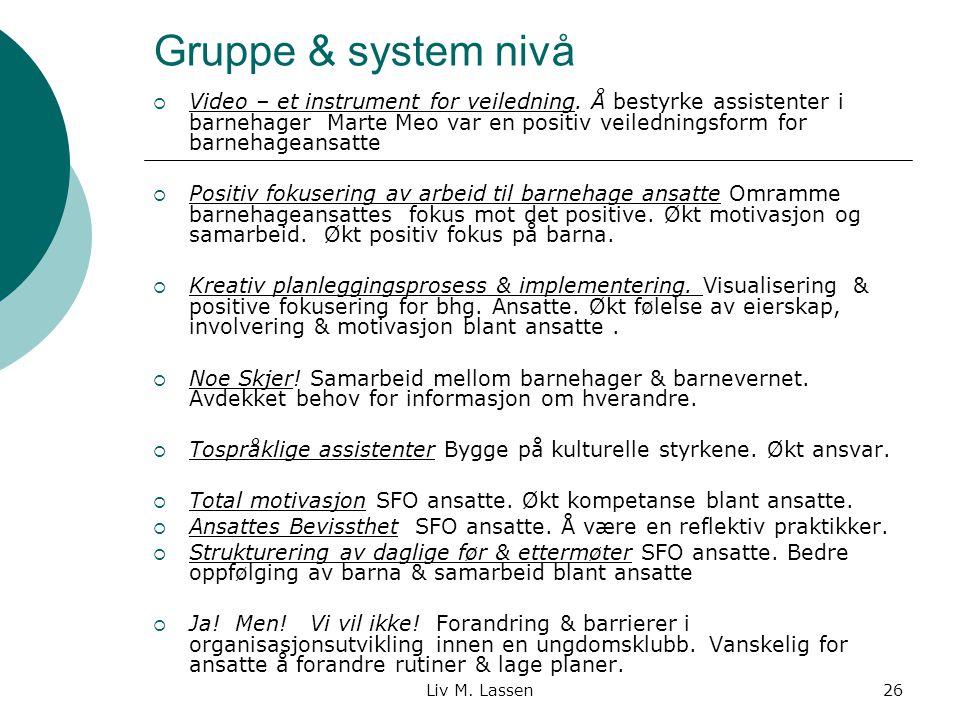 Gruppe & system nivå