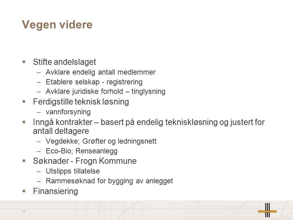 Vegen videre Stifte andelslaget Ferdigstille teknisk løsning