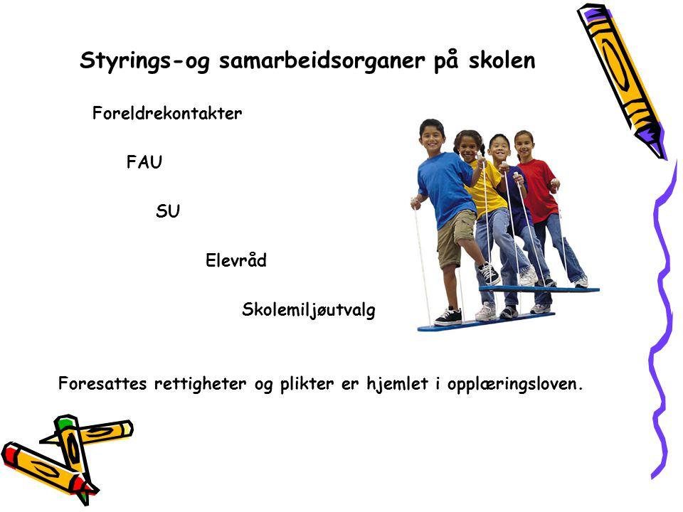 Styrings-og samarbeidsorganer på skolen