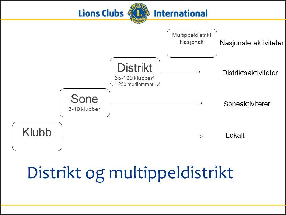 Distrikt og multippeldistrikt