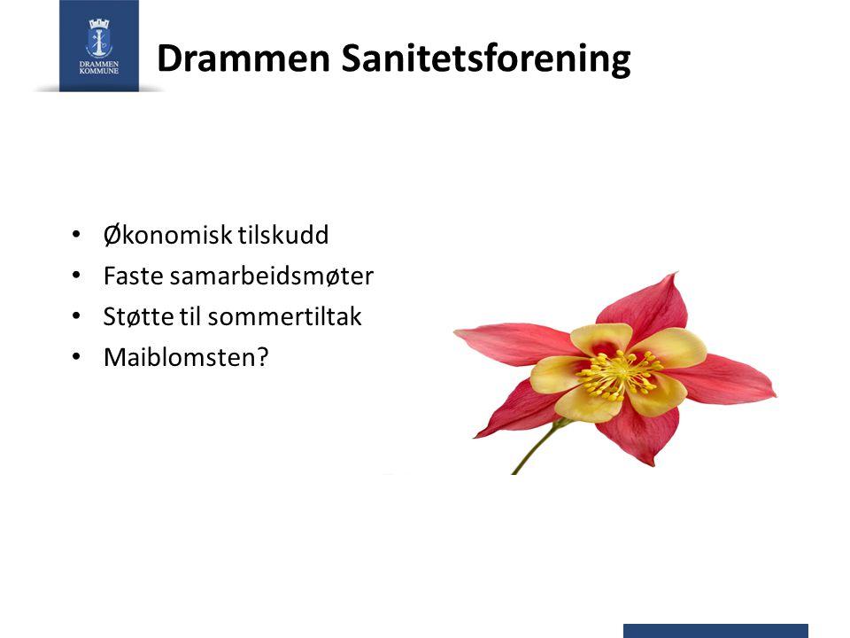 Drammen Sanitetsforening