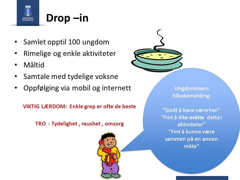 Drop –in Samlet opptil 100 ungdom Rimelige og enkle aktiviteter Måltid