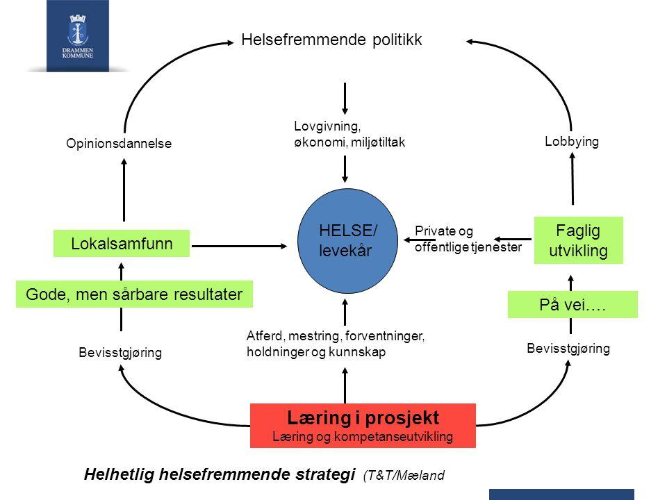 Læring i prosjekt Helsefremmende politikk HELSE/ levekår