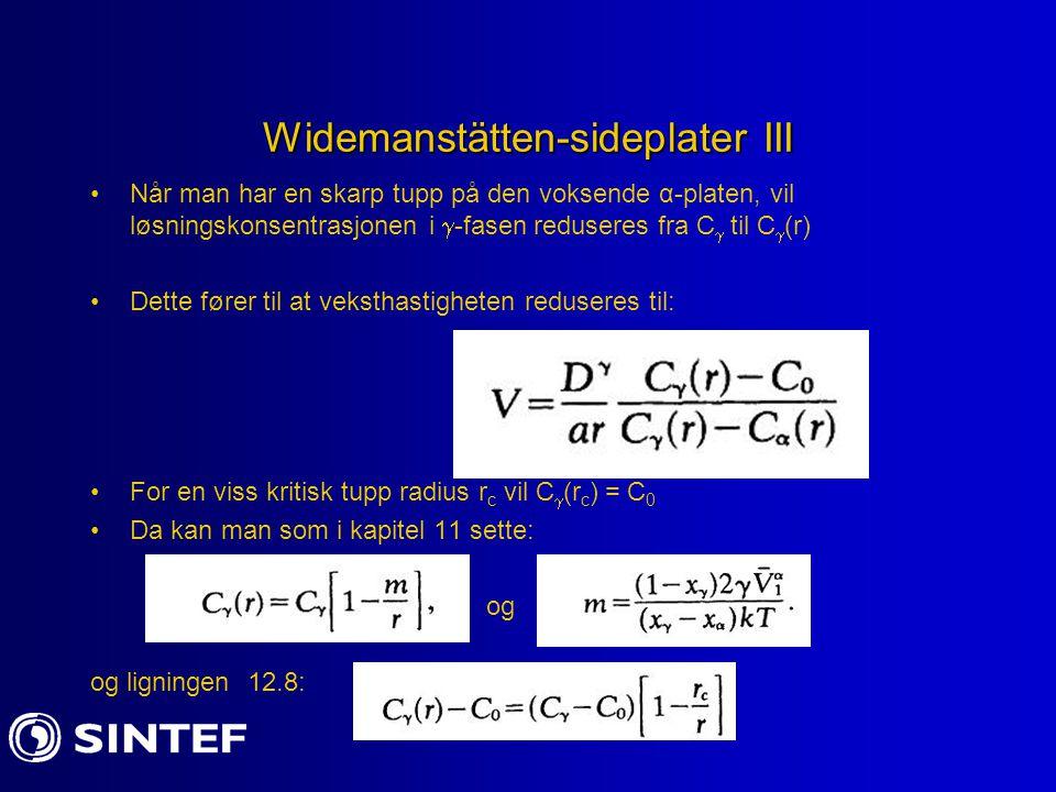 Widemanstätten-sideplater III