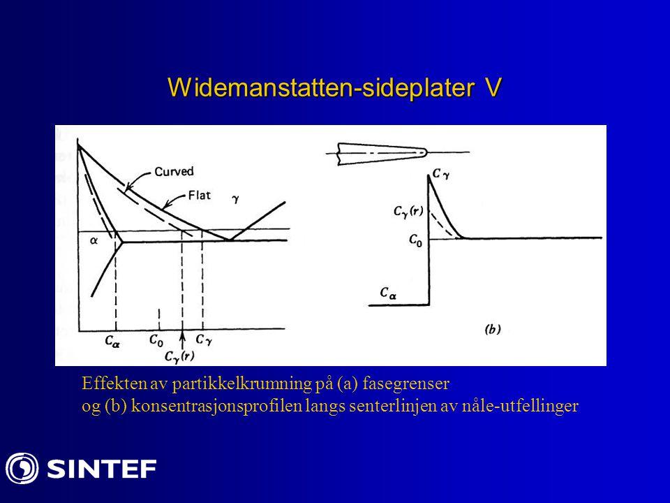 Widemanstatten-sideplater V