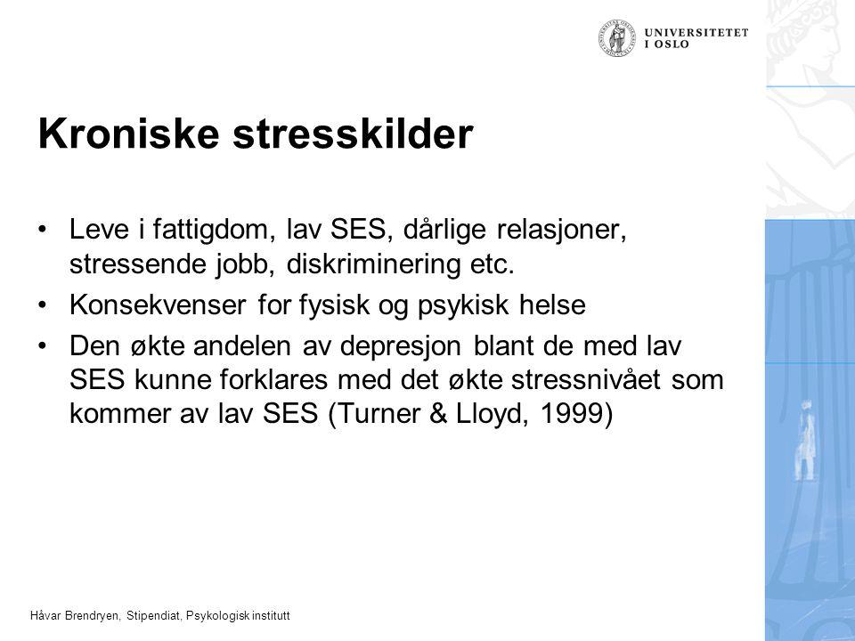 Kroniske stresskilder
